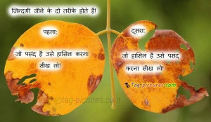 Lovely quotes on life in hindi