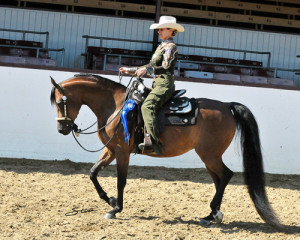 AHASFV Unanimous 1st Western Pleasure AOTR and 1st Western Pl Jr Horse