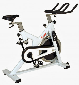 Sunny Health & Fitness SF-B1110 Premier Indoor Cycling Bike, review of ...