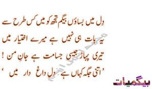 Funny Poetry In Urdu Funny Urdu JOkes Poetry Shayari Sms Quotes Covers ...