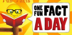 Quote Funny Crude Cartoon Rude Wronge Facebook Timeline Fb Cover ...