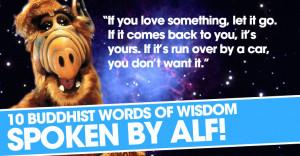 alf-words.jpg