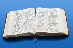 Bible Quotes About Hair