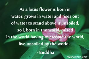 flower-As a lotus flower is born in water, grows in water and rises ...