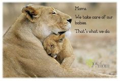 Moms. We take care of our babies. That's what we do. ♥ More ...