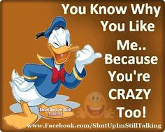 ... it more bbbhhhaaa donald o connor sarcastic quotes donald ducks quotes