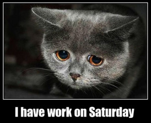 ... working on saturday working saturday bill lumbergh office space funny