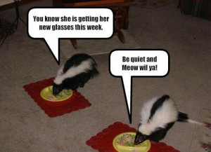 ... 13 2012 in animal jokes animal pictures funny animal pictures