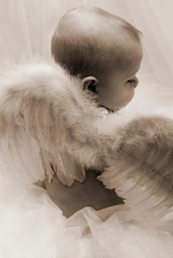 baby-angel-sepia.jpg