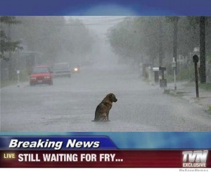 Breaking news… still waiting for fry.. aww makes me sad every time