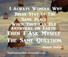 Bird Cage Quote