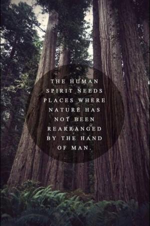 Nature, spirit, serenity, inspiration