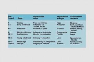 Erik Erikson 8 Stages Of Development Chart