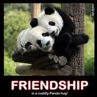 panda quotes photo: Friendship friendship_panda.jpg