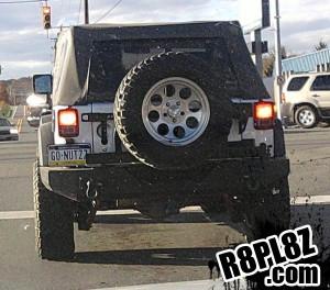 go-nutzz-funny-license-plate