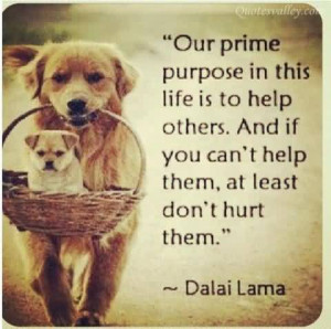 Our Prime Purpose In This Life Is To Help Others ~ Dalai Lama