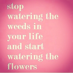 Water the Flowers Quote