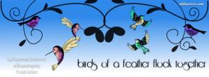 Birds of a Feather Facebook Cover