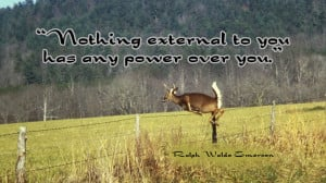 ralph waldo emerson power wallpaper Deer Jumping Fence External Power ...