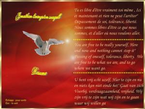 theroadnottaken jonathan livingston seagull
