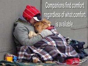 Homeless_Dog_Companion_by_Darry_D.jpg