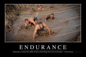 Endurance: Inspirational Quote and Motivational Poster Photographic ...