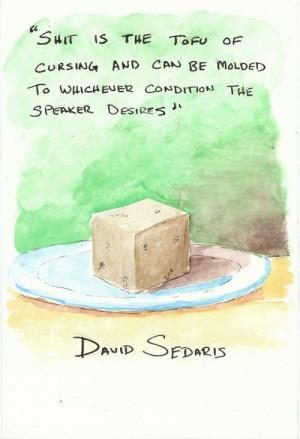 David Sedaris Quotes picture