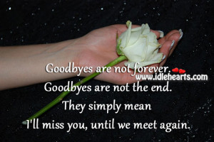 Home » Quotes » I'll Miss You, Until We Meet Again.