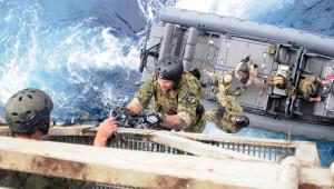 navy_seal_cc_us_navy.jpg