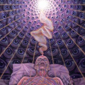 Death, Rebirth, and Reincarnation