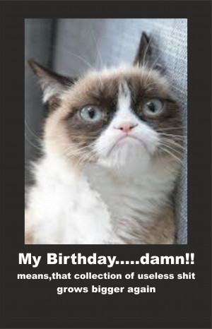 Displaying 16> Images For - Happy Cat Meme...
