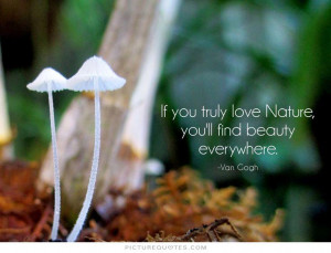 Nature Quotes Artist Quotes Vincent Van Gogh Quotes