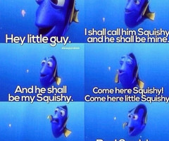 Tagged with finding nemo squishy