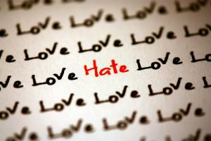 Software Development: a Love-Hate Relationship