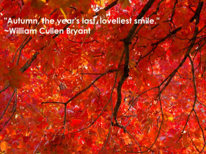 Autumn, the year's last loveliest smile – William Cullen Bryant