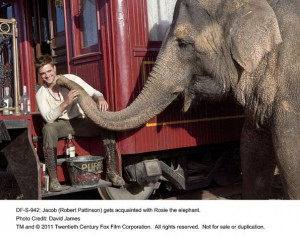Water for Elephants' review: High-wire circus act