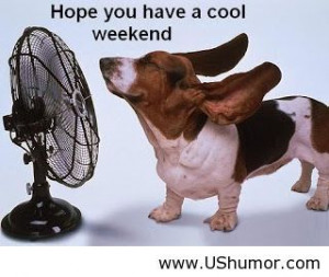 Have a cool weekend US Humor - Funny pictures, Quotes, Pics, Photos ...