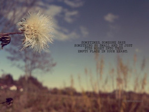 Word of the day- Dandelion