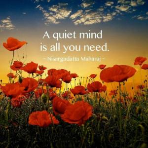Quiet Minds Quote