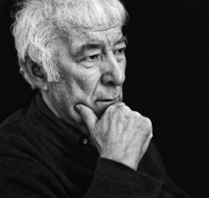 Seamus Heaney: A Life in Works