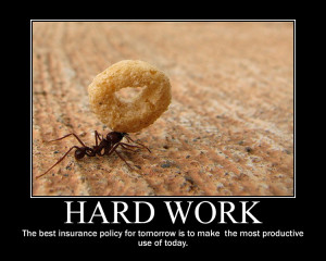 Hard Work Quote Ants