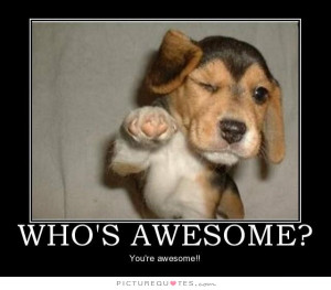 Who's awesome? You're awesome. Picture Quote #2