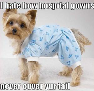 Heath Insurance, Medical and Malpractice Humor