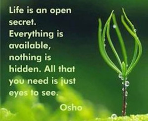 life is an open secret osho picture quote