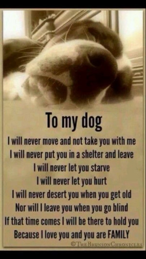 ... my boys in the end. They were my life and I miss them everyday. More