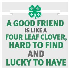 ... clovers love my friends 4 h ffa 4h friendsforlik 4h hors 4