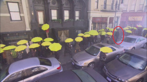 There goes Ted in his black umbrella onto the sea of yellow ...