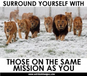 Meaningful quote on team work