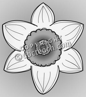 daffodil head 2 grayscale 1 daffodil head clip art illustration framed ...