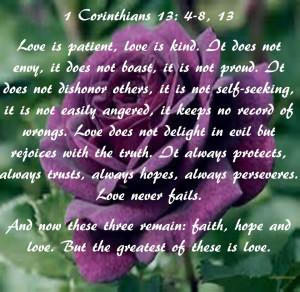 wallpaper image description for purple rose love wallpaper purple rose ...